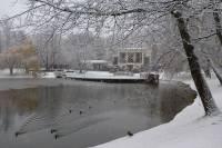 В Киеве – первый снег (обновлено)